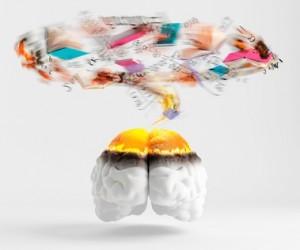 Mind map a book